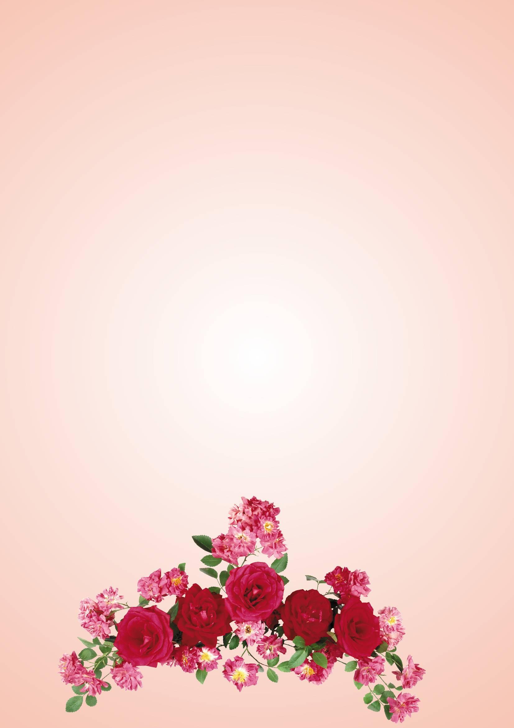 Открытки с цветами без надписей для открыток