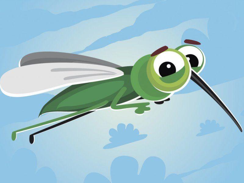 Детские загадки про комара и его укус: короткие и интересные загадки с ответами