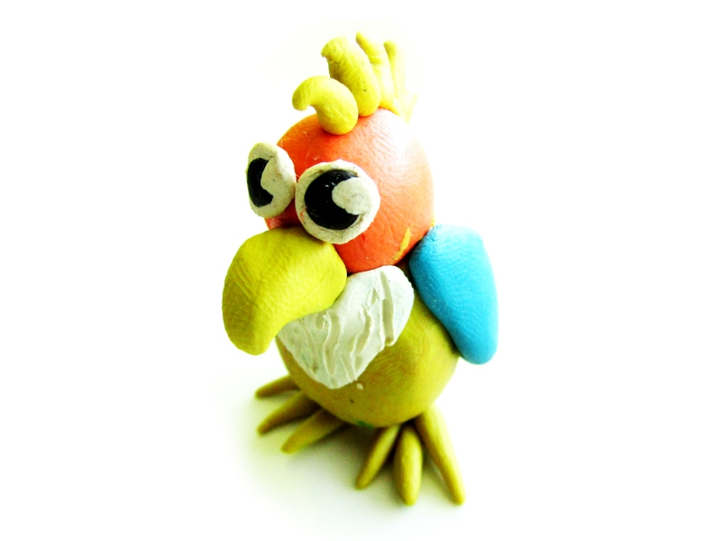 Как слепить попугая из пластилина: пошаговая фото-инструкция, идеи
