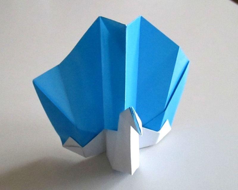 Павлин в технике оригами: поэтапная схема с описанием