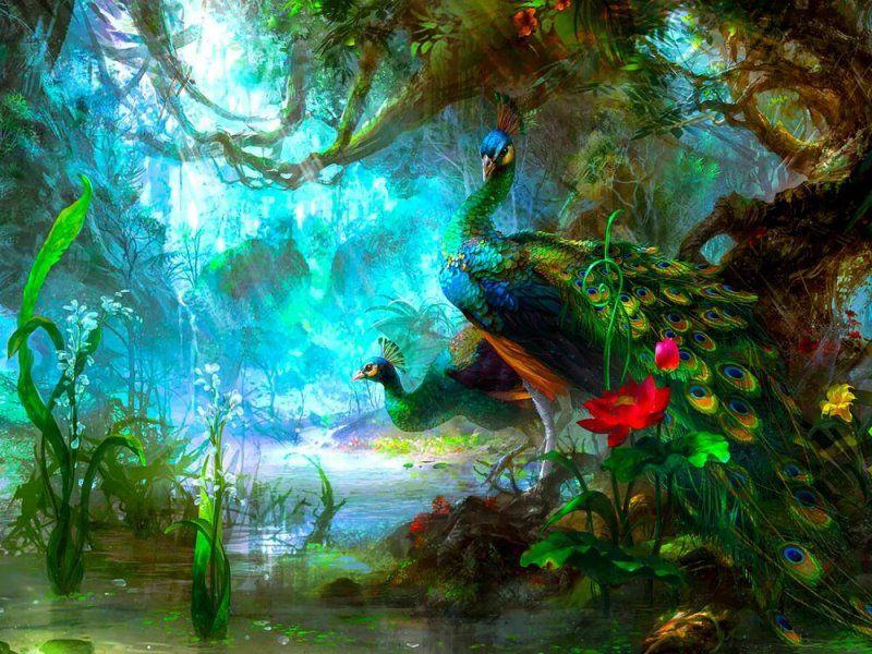 Про волшебного павлина Индийская народная сказка
