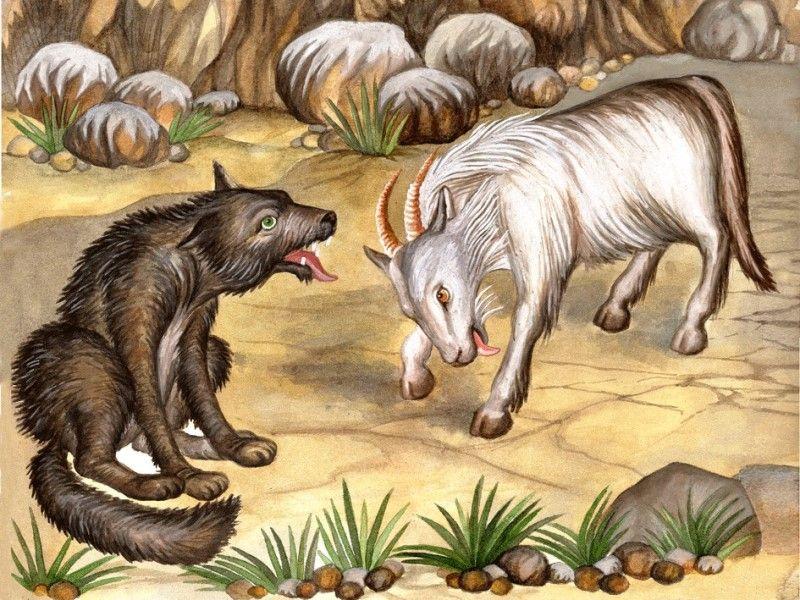 Глупый волк русская народная сказка