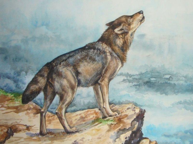 Волк и теленок (русская народная сказка)