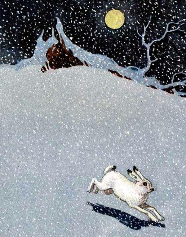 Заяц: сказка А.Н.Толстого