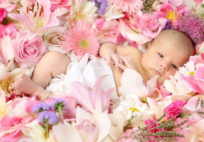 Какие цветы дарят в разные месяцы рождения ребенка