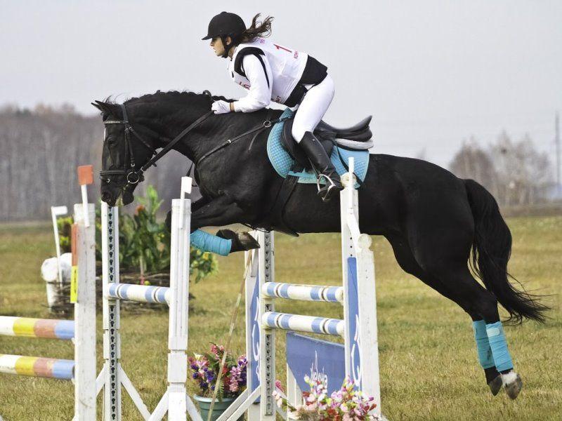 Что дает ребенку секция конного спорта