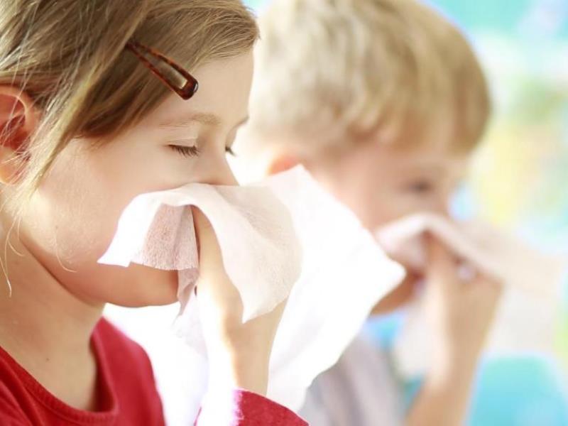 Аллергия на пыль: симптомы, профилактика и лечение