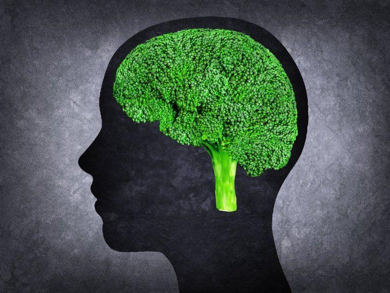 Продукты, полезные для мозга: список