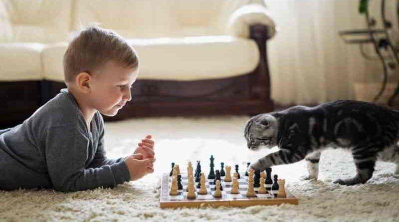 Настольные игры из нашего детства