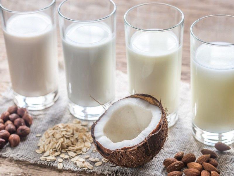 Заменители молока: виды растительного продукта и их свойства