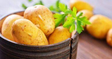 картошка для детей